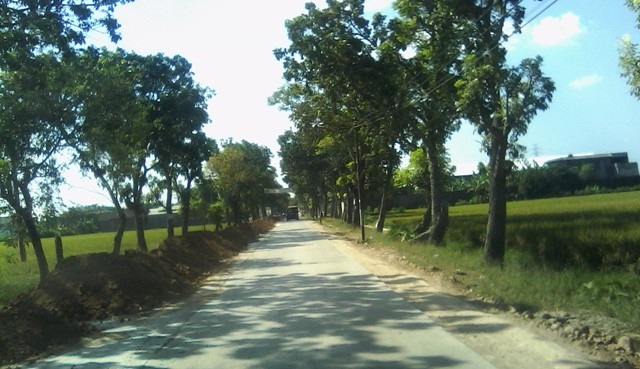 Perbaikan Jalan Raya Pati Kayen Dikebut