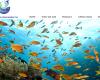Lowongan Kerja Supervisor QC Ikan PT Dua Putra Utama Makmur Pati