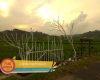 Kreatif, Begini Cara Pemuda Desa Ngablak Agar Warga Tak Buang Sampah Sembarangan