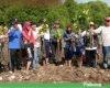 Cegah Abrasi, 2.000 Bibit Mangrove Ditanam di Sepanjang Pantai Langgenharjo Margoyoso