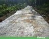 Rampung, Betonisasi Jalan Penghubung Desa Godo - Dukuh Selowire Sepanjang 1,7 KM