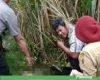 Geger, Warga Sidoluhur Jaken Temukan Orang Meninggal di Ladang Tebu