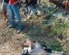 Tertangkap Basah Mencuri Motor, Seorang Pria di Sukolilo Babak Belur Diamuk Massa