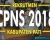 Pengumuman Pembagian Jadwal dan Sesi Tes SKD CPNS Kabupaten Pati 2018