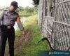 Ditinggal Nonton Dangdut, Motor Milik Nelayan Dukuhseti Raib Digondol Pencuri