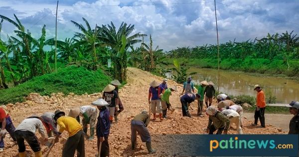 Padat Karya Tunai, Harapan Petani Wegil Sukolilo