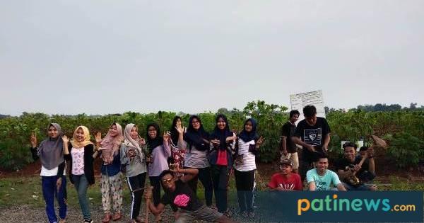 Hijaukan Desa, Karang Taruna Tunas Mukti Tanam 4000 Bibit Pohon