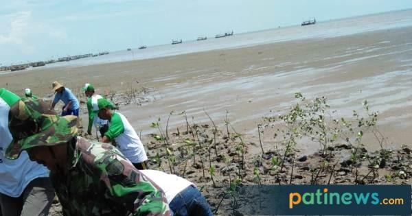 5.000 Pohon Ditanam di Nol Kilometer Desa Banyutowo