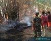 Bakar Sampah, Api Merambat ke Rumpun Bambu di Desa Jatisari Jakenan