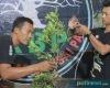 Kolaborasi Rumah Seni dan Komunitas Bonsai Pati, Kian Solid